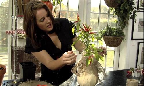 Iniciar un negocio de arreglos florales